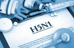 Virus H5N1 Concetto MEDICO Fotografie Stock