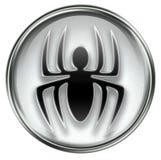 Virus icon grey Royalty Free Stock Photo