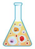 Virus mignon coloré de projet de la Science Photographie stock libre de droits