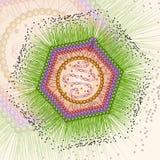 Virus Mimi Fondo ENV 10 Fotografia Stock