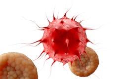 VIRUS _ Virus i den infekterade organismen, virus- sjukdomepidemi 3d framför Vektor Illustrationer