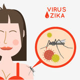 Virus zika vector illustration. Mosquito infected with zika viru Royalty Free Stock Photo