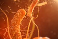 virusbakterier för illustration 3D Virus- infektion orsaka den kroniska sjukdomen, minskad immunitet Röda bakterier under Stock Illustrationer