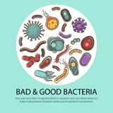 Viruses and bacteria poster for medical healthcare and biology or bacteriology science flat vector design. Viruses, bacteria and microbes poster for biology Royalty Free Stock Images