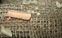 Virutas de madera en fondo de la arpillera Fotografía de archivo