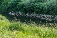 Virutas en el Green River Imagen de archivo libre de regalías