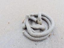 Virveln av sand och gyttja på strandensemblen vid släpandet eller sand avmaskar med den bottensatsbollar eller kulan som göras av Royaltyfria Bilder