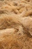 Virvlande runt fibrer bildar en abstrakt struktur Royaltyfri Fotografi