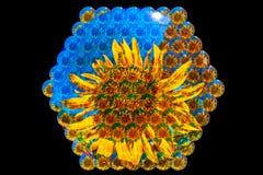 Visão da abelha ilustração stock