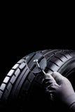 Vis dans le pneu Images stock