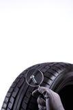Vis dans le pneu Photo stock