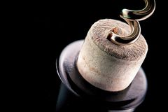 Vis de liège et bouteille de vin image libre de droits