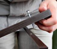 Vis de vissage dans le wenge de meubles de carton gris Image stock