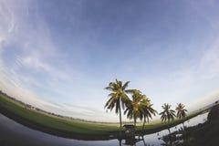 Vis-oog mening van kokospalm en smal hut royalty-vrije stock fotografie