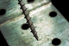 Vis sur le fond de plaque métallique Photographie stock libre de droits