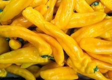 Visa avlånga gula peppar i en supermarket royaltyfria bilder