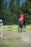 Visa den banhoppninghästen och ryttaren Royaltyfri Foto
