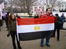 visa den deras flaggan Royaltyfria Foton
