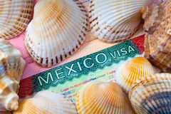 The visa of Mexico and sea cockleshells Stock Image