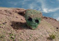 Visage étranger dans une roche énorme image stock