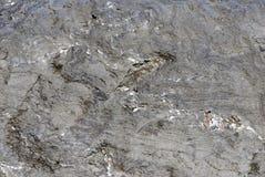 Visage 34 de roche Image stock
