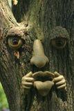 Visage d'arbre image stock