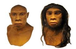 Visage d'homme de Néanderthal Photographie stock libre de droits