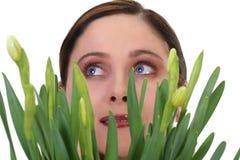 Visage d'une femme avec des jonquilles Photo libre de droits