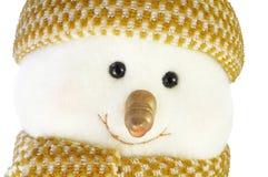 Visage de bonhomme de neige Photographie stock libre de droits