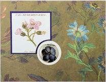 Visage de carte de voeux de Papercraft Photo libre de droits