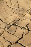 Visage de désert Images libres de droits