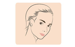 Visage de femme de beauté illustration stock
