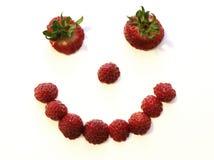 Visage de fraise Image libre de droits