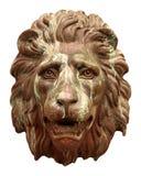 Visage de lion Photo libre de droits