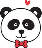 Visage de panda Image stock