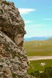 Visage de roche Photo libre de droits