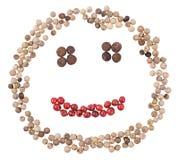 Visage de sourire de poivre Photos stock