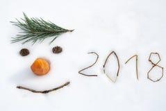 Visage drôle de la nouvelle année 2018 Images libres de droits
