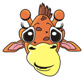 Visage drôle d'une girafe Image stock