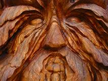 Visage en bois Photo stock