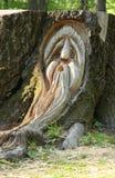Visage en bois découpé Photo libre de droits