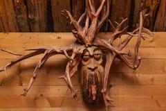 Visage en bois de la racine d'un arbre image libre de droits