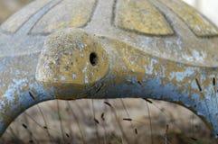 Visage en pierre de tortue Photo libre de droits