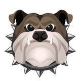 Visage fâché de bouledogue dans l'illustration réaliste de vecteur de collier en métal illustration stock