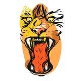 Visage fâché de tigre Photographie stock