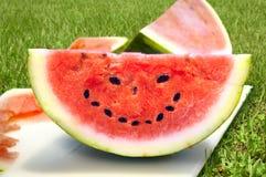 Visage heureux d'été Photo stock