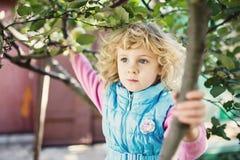 Visage heureux d'enfant entre les feuilles Image stock