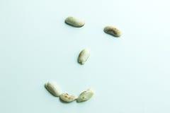 Visage heureux fait à partir des arachides Photographie stock libre de droits