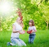 Visage, mouche à fraise, amusement, photo stock