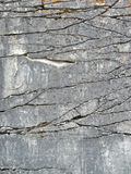 Visage normal de roche avec le fond de ruptures photos stock